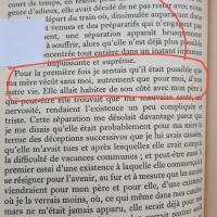 A l'ombre des jeunes filles en fleur (#Proust)